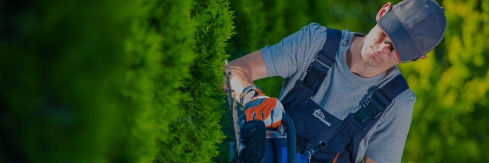 Hacemos que tus jardines  recuperen su esplendor